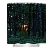 Udell Sunset Shower Curtain