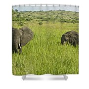 Ugandan Elephants Shower Curtain