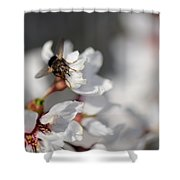 Ugly Pollinator Shower Curtain