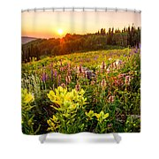 Uinta Wildflowers Shower Curtain