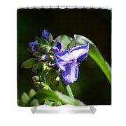 Ultra Violet Wildflower Shower Curtain
