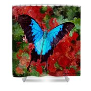 Ulysses Butterfly Shower Curtain