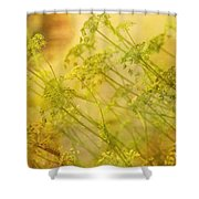 Umbels With Bokeh Shower Curtain