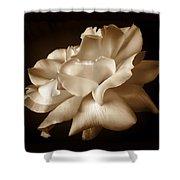 Umber Rose Floral Petals Shower Curtain