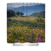 Umbria Wildflowers Shower Curtain