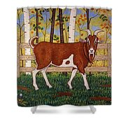Uncle Billy's Goat Shower Curtain