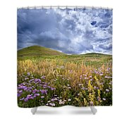Under The Big Sky Shower Curtain