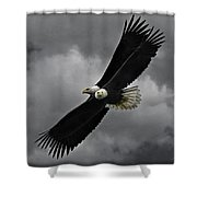 Under The Double Eagle Shower Curtain