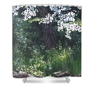 Under The Shade Of The Almond Blossom Shower Curtain