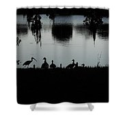 Under The Shadow Of The Day  Shower Curtain