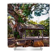 Under The Shadow Of The Tree. Eureka. Mauritius Shower Curtain
