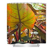 Under The Tropical Leaves Shower Curtain