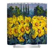 Under Tuscan Sun Shower Curtain