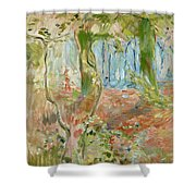 Undergrowth In Autumn Shower Curtain