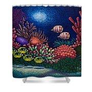 Undersea Creatures Vi Shower Curtain