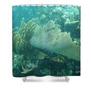 Underwater Forest Shower Curtain by Adam Jewell