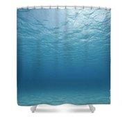 Underwater Scene. Shower Curtain