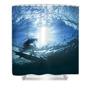Surfing Into The Eye Shower Curtain
