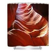 Undulating Pelvis Shower Curtain