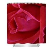 Unfolding Glory Shower Curtain