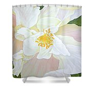 Unfurling White Hibiscus Shower Curtain