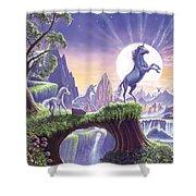 Unicorn Moon Shower Curtain