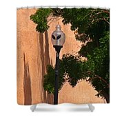 Unique Roswell Street Light Shower Curtain