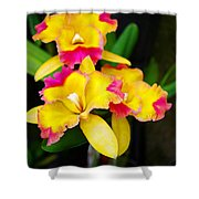 unnamed - Orchid Shower Curtain