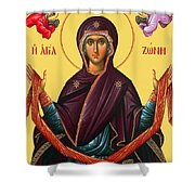 Unspoken Mary Shower Curtain