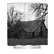 Until The Cows Come Home Shower Curtain