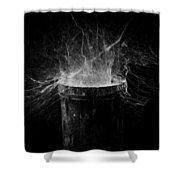 Untitled Cobweb Shower Curtain