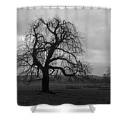Winters Gloom Shower Curtain