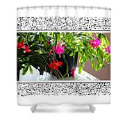 Unusual Simultaneous Bloomers 2 Shower Curtain