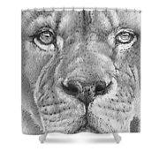 Up Close Lion Shower Curtain