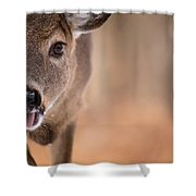 Up Close White Tail Shower Curtain