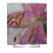 Up Close With Lily Shower Curtain