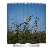 Up On The Hill Shower Curtain