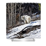 Up On The Mountain Top Shower Curtain