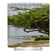 Up The Coast Shower Curtain