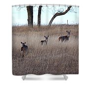 Up The Hill Shower Curtain