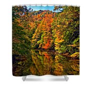 Up The Lazy River Painted Shower Curtain