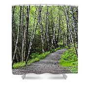 Up The Trail Shower Curtain