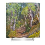Uphill Path-batiquitos Shower Curtain