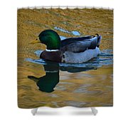 Upon Sunset Waters Shower Curtain