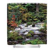 Upper Willamette River Shower Curtain