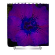 Urban Art Hibiscus II Shower Curtain