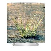 Urban Grass Shower Curtain