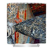 Urchins Of Time Shower Curtain