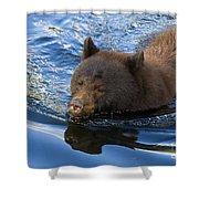Ursa Mirrored Shower Curtain