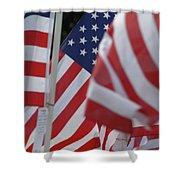 Usa Flags 01 Shower Curtain